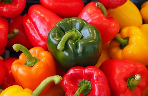 sweet-peppers-499075_640