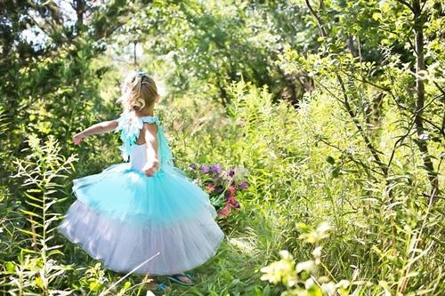 princess-869722_640